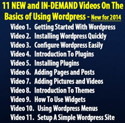 WordPress Basics 2014 (11 Videos)