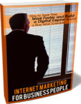 Internet Marketing For Business People (10 Videos)